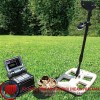 NOKTA Golden King DPR Plus Metal Detector